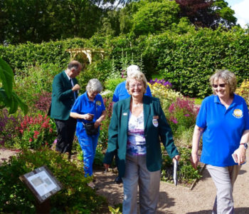 Open Garden weekend